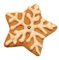 Winter Cookies 4
