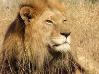 Lahore Wildlife Park