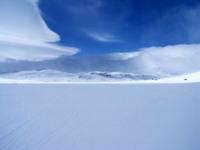 Polar vision 2
