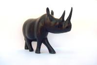 Kazungu, the Black Rhino