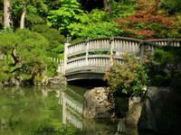 Japenese Gardens 3