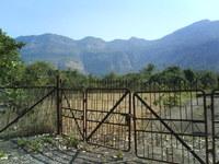 Rural scene 5