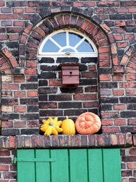 Pumpkins in fall 2
