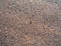 Sand & Spider Texture