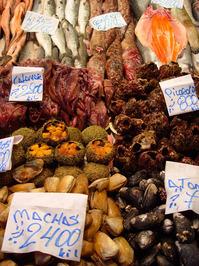 Chile Sea food