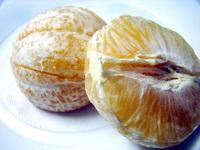 Sweet lime6