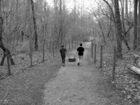 Picnic Walk
