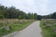 Parkland Path 1