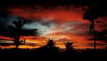 hawaiian sky 3
