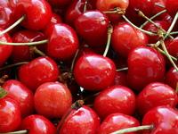 Delicious Cherries 1