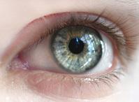 colorful eye 8