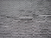 roof shingles 4