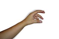 A hand