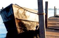 Rustic Boat 3
