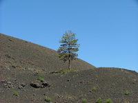 Etna landscape 3