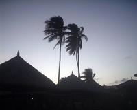 Quezon at night