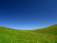 vista_in_field_ 2