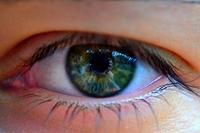 Boy's Green Eye