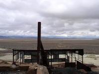 abandoned plant 3
