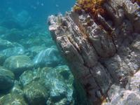 Underwater landscape 3