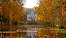 Autumn in Arnhem