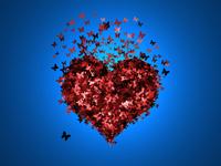butterflies in heart