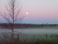 Farm at Daybreak 1