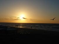 Zaanvoort aan Zee 2