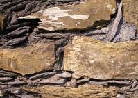 Rustic brick texture