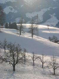 Winterlandscape 3