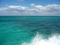 Sea & Surf 4