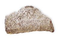 Dendritic Silver