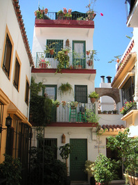 narrow house in the south