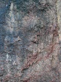 Wall texture 1