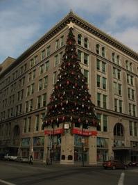 Pittsburgh Christmas Trees