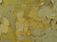 Flaking paint 3