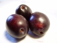 plums 02