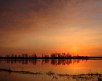 Dawn on the Floodplain 4
