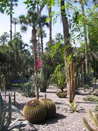 Morocco gardens 1
