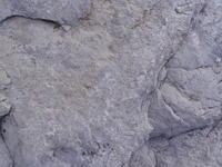 stone macro 1