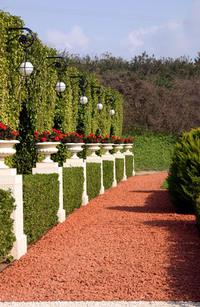 Bahai garden 3