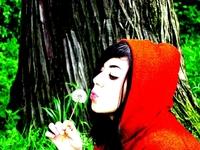 Little Red Ridding Hood