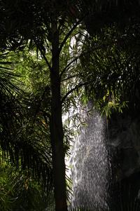 Water Fall 2
