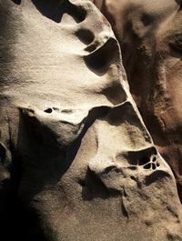 Chuckanut Sandstone