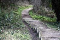 secluded walkway