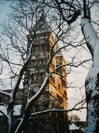 Domkyrkan in winter