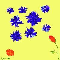 Flowers set 1