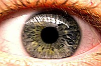small eye