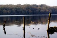 Lakelands 2