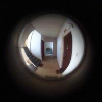 who's knocking